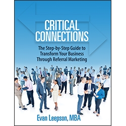 Critical Connections by Evan Leepson
